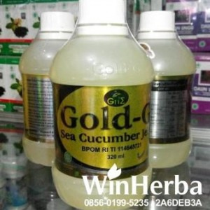 Jelly Gamat Gold G 320 ML