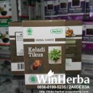 Herbal Keladi Tikus Herbal Produksi Herbal Indo Utama