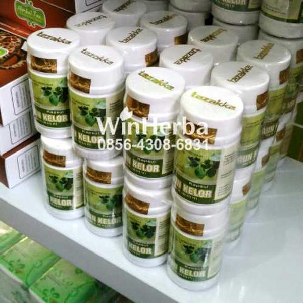 Herbal Daun Kelor, Herbal Daun Kelor – Jogja, Grosir Dan Ecer Herbal Daun Kelor, Khasiat Herbal Daun Kelor, Manfaat Herbal Daun Kelor, Harga Herbal Daun Kelor Terkini, Toko Herbal Di Jogja Jual Herbal Daun Kelor, Produk Herbal Daun Kelor Asli, Harga Herbal Daun Kelor Murah Dan Asli, Herbal Daun Kelor Untuk Nyeri Sendi, Manfaat Herbal Daun Kelor Sebagai Nyeri Sendi, Jual Obat Herbal Nyeri Sendi Dengan Merk Herbal Daun Kelor, Alamat Penjual Herbal Daun Kelor – Jogja, Kenggulan Herbal Daun Kelor untuk Nyeri Sendi, Nyeri Sendi, Nyeri Sendi Herbal Daun Kelor
