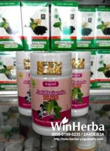 Herbal Jati Belanda Plus Tazakka, Herbal Jati Belanda Plus Tazakka – Jogja, Grosir Dan Ecer Herbal Jati Belanda Plus Tazakka, Distributor Herbal Jati Belanda Plus Tazakka, Agen Herbal Jati Belanda Plus Tazakka - Jogja, Khasiat Herbal Jati Belanda Plus Tazakka, Manfaat Herbal Jati Belanda Plus Tazakka, Harga Herbal Jati Belanda Plus Tazakka Terkini, Toko Herbal Di Jogja Jual Herbal Jati Belanda Plus Tazakka, Produk Herbal Jati Belanda Plus Tazakka Asli, Harga Herbal Jati Belanda Plus Tazakka Murah Dan Asli, Herbal Jati Belanda Plus Tazakka Untuk Herbal Untuk Obesitas, Manfaat Herbal Jati Belanda Plus Tazakka Sebagai Herbal Untuk Obesitas, Jual Obat Herbal Herbal Untuk Obesitas Dengan Merk Herbal Jati Belanda Plus Tazakka, Alamat Penjual Herbal Jati Belanda Plus Tazakka – Jogja, Kenggulan Herbal Jati Belanda Plus Tazakka untuk Herbal Untuk Obesitas, Herbal Untuk Obesitas, Herbal Jati Belanda - Obat Obesitas