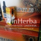 Propolis Diamond Lite (Herbal Untuk Antibiotik, Antioksidan, Antiseptik)